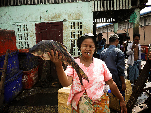 This lady will not help you get a Myanmar Visa. She will sell you a fish.