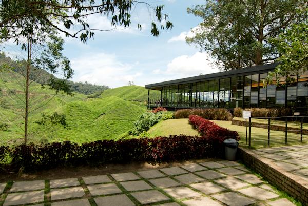 BOH Tea Plantation Cafe, Cameron Highlands, Malaysia