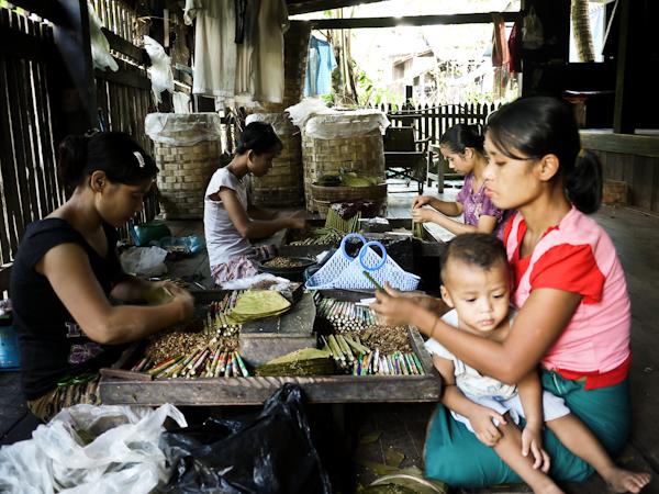 Myanmar Cigar Factory. Is this a Sweatshop?