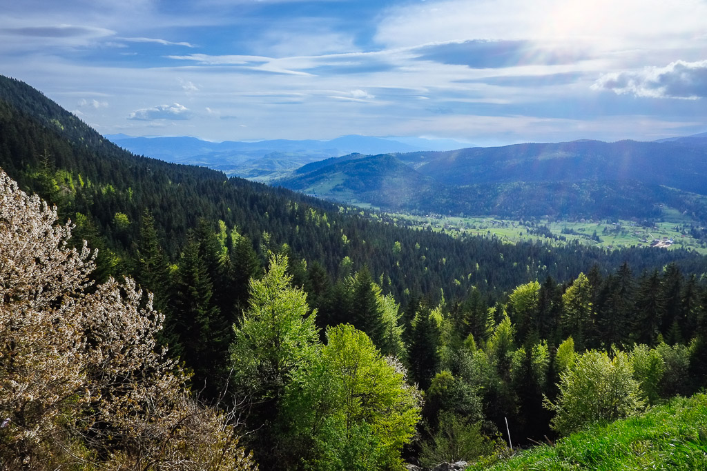 bosnia mountain view