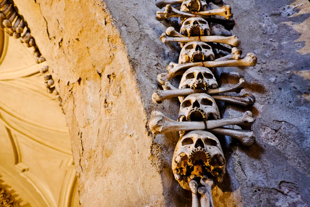 Sedlec Ossuary Row of Skull and Bones