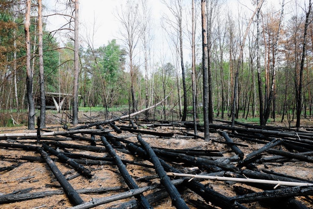 chernobyl fire damage