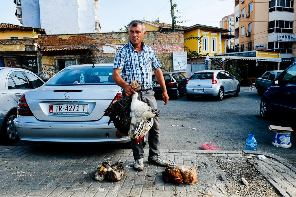chicken shop tirana albania