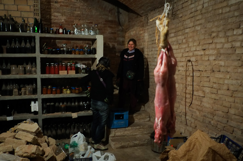 In an Italian basement: homemade tomato sauce, homemade wine, and rabbits hanging from the ceiling.