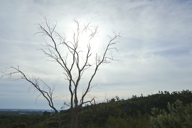 Lesmurdie Falls - Perth