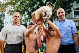 moldova cock fighting