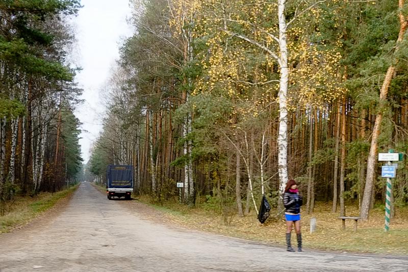 polish forest prostitutes