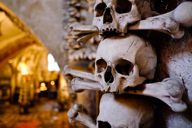 sedlec ossuary bones