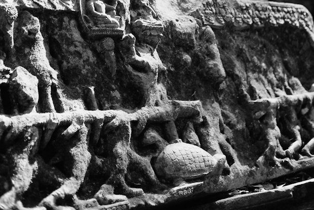 Turtle carving, Beng Melea